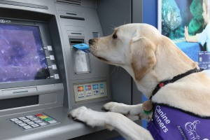 May taking card from ATM